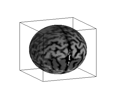 spherical brain sample