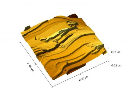 Example topography